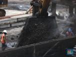 Gak Kaleng-Kaleng, Cadangan Batu Bara RI Terbesar ke-6 Dunia!