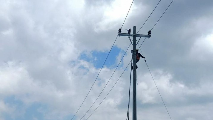 PLN pastikan pasokan listrik Food Estate di sumut terpenuhi. (Dok PLN.)