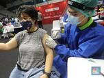 Bio Farma Mau Vaksinasi Mandiri Pakai Sinopharm & Moderna