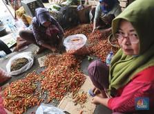 'Pedasnya' Harga Cabai Rawit Bikin Inflasi 0,10% di Februari