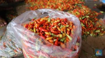 penjualan cabe rawit di pasar kramat jati jakarta cnbc indonesia tri susilo 5 169