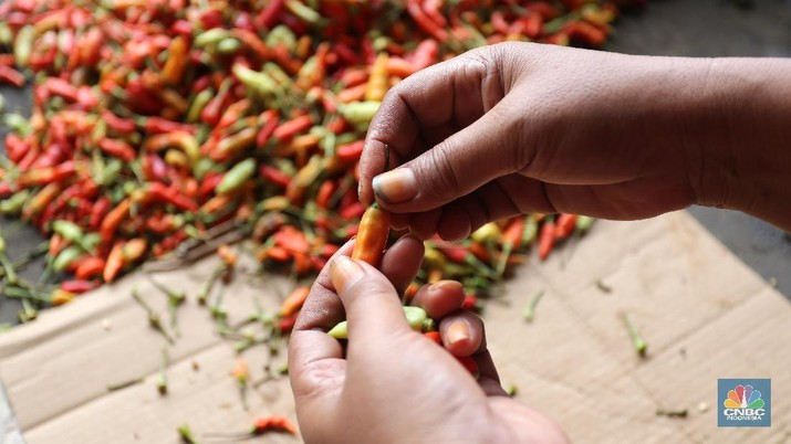 Sejumlah pedagang melakukan bongkar muat cabai rawit merah di Pasar Kramat Jati, Jakarta, Jumat (26/2/2021). Cabai rawit merah kini naik 100 ribu per kilogram yang sebelumnya hanya 60 ribu per kilogram, kenaikan diduga faktor dari cuaca ekstrem. Susanto (58) pedagang asal Jawa Tengah yang membuka lapak di Los H mengatakan