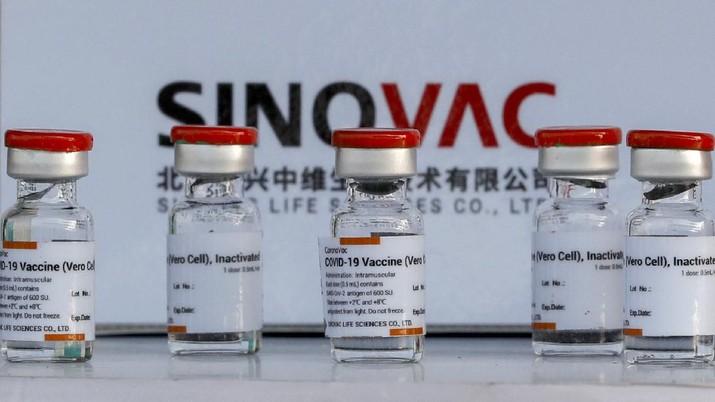Vaksin Sinovac. (AP/Sakchai Lalit)
