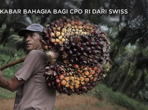 Good News! Ada 'Angin Surga' dari Swiss untuk CPO NKRI