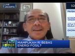 Faisal Basri: Tak Punya Roadmap, RI Sulit Bebas Energi Fosil