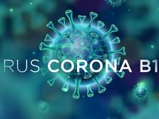 Mutasi Corona B117 Inggris tak Terdeteksi Swab Test PCR?