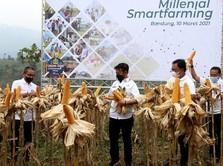 Millenial Smartfarming, Upaya BNI Kawal Pertanian Masa Depan