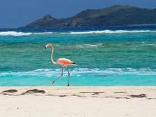 Indahnya! Ini 6 Pulau yang Bebas buat Pelancong Saat Pandemi