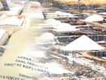 Garis Pantai RI Terpanjang Tapi Garam Masih Impor, Kok Bisa?
