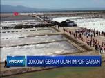 Jokowi Geram Ulah Impor Garam