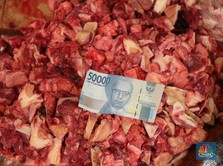 Ratusan Ton Daging Impor Masuk RI, Pedagang Komentar Begini!