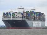 Gila! 'Paus Raksasa' Terdampar, Terusan Suez Macet Total