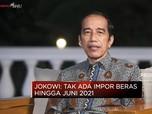Presiden Jokowi Pastikan Tak Impor Beras Hingga Juni 2021