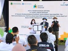 Siapkan KUR Rp1,1 T, bank bjb Dukung Program Petani Milenial