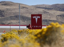 300.000 Mobil Tesla Kena Recall, Ada Apa?