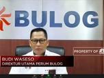 Bulog Tak Impor Beras & Serap Hasil Panen Sampai Juni 2021