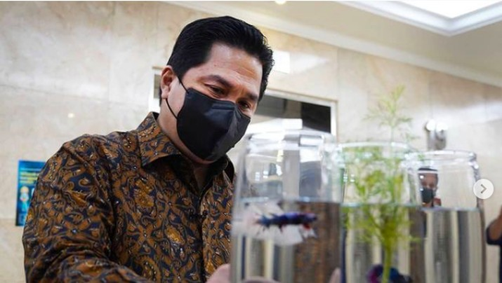 Erick Thohir dan ikan cupang di Kementerian BUMN
