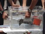 Penampakan CVR Sriwijaya Air SJ182 yang Baru Ditemukan