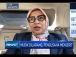 Kadin DKI: Sektor Transportasi Paling Terimbas Larangan Mudik