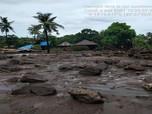 Bencana Banjir Bandang NTT: 84 Meninggal, 71 Masih Dicari