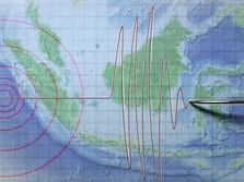 Manokwari Kembali Digoyang Gempa Bumi M 4,6