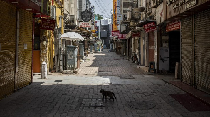 A cat walks in a deserted market area during a weekend lockdown in New Delhi, India, Saturday, April 17, 2021. Over 200,000 new infections were detected in the past 24 hours, and major cities, like Mumbai and New Delhi, are under virus restrictions. (AP Photo/Altaf Qadri)