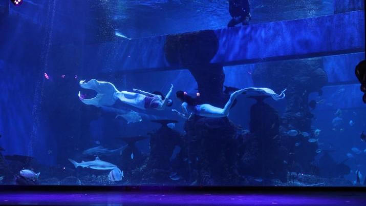 Penyelam menyapa pengunjung di Jakarta Aquarium dan Safari di Jakarta, Rabu (21/4/2021).  (CNBC Indonesia/Tri Susilo)