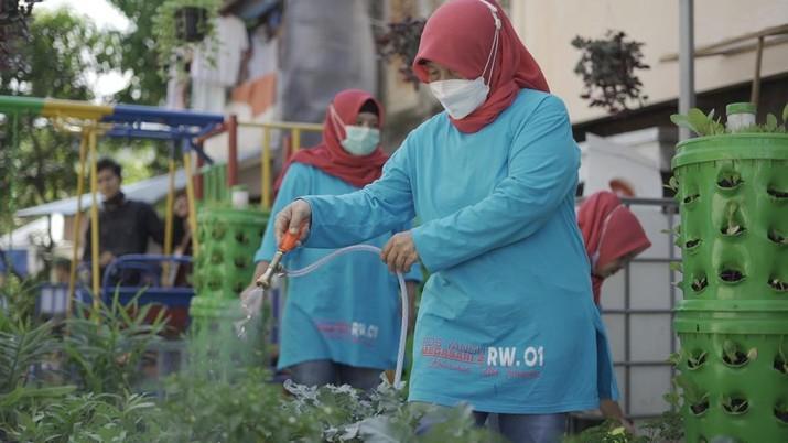 """Program """"BRI Peduli Woman Comuni-Tree"""" berupa pemberian bantuan urban farming  (Dok. BRI)"""