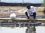 Menteri KKP Trenggono: Jangan Lagi Ada Overfishing di NKRI!