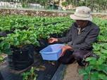 Wujudkan SDGs,  Pertamina Salurkan Bantuan ke Pesantren