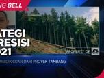 Diversifikasi Bisnis Tambang Nikel, Strategi PPRE di 2021