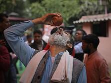 Waduh! Orang India Minum Urin Sapi demi Tangkal Covid-19