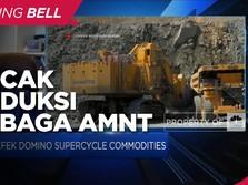 Hilmi Panigoro: 2023, Puncak Produksi Tembaga Amman Mineral