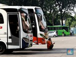 Kabar Baik! Pengusaha Bus Megap-Megap, Siap Diguyur Subsidi