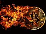 Harga Kripto Menghijau Lagi! Bitcoin Kembali Memimpin