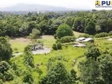 Dear Warga Bogor, Yuk Intip Potret Kebun Raya Cibinong