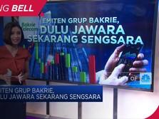 Emiten Grup Bakrie, Dulu Jawara Sekarang Sengsara