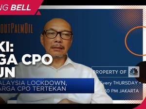 Gapki: Harga CPO Turun Tak Terkait Lockdown Malaysia