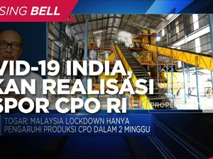 Peningkatan Kasus Covid India Tekan Realisasi Ekspor CPO