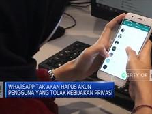 WhatsApp Batal Hapus Akun Pengguna yang Tolak Privasi