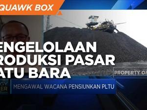Pengelolaan Produksi & Pasar Batu Bara, PR Saat PLTU Pensiun