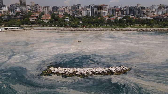 An aerial photo of the sea at the Caddebostan shore, in Asian side of Istanbul, Monday, June 7, 2021, with a huge mass of marine mucilage, a thick, slimy substance made up of compounds released by marine organisms, in Turkey's Marmara Sea. Turkey's President Recep Tayyip Erdogan promised Saturday to rescue the Marmara Sea from an outbreak of