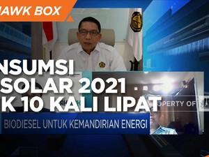 Terus Naik, Serapan Biodiesel 2020 Capai 13,2 Juta KL