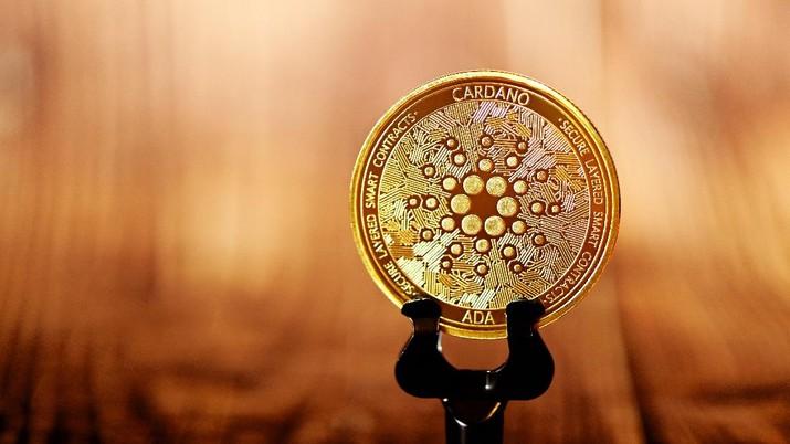 Ilustrasi Cardano (Photo by Executium on Unsplash)