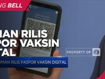 Jerman Rilis Paspor Vaksin Digital