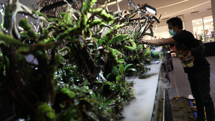 Trans World of Plants (CNBC Indonesia/ Andrean Kristianto)