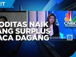 Kenaikan Harga Komoditas Topang Surplus Neraca Dagang Mei