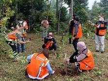 Peduli Kelestarian Alam, BNI Sukses Kembangkan Hutan Organik