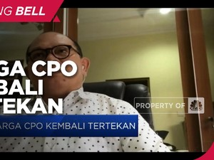 Ekspektasi Penambahan Supply Dorong Koreksi Harga CPO