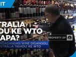 Perdagangan Wine Diganggu, Australia 'Ngadu' ke WTO